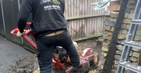 Dean Removing a Tree Stump