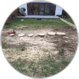 stump-removal-in-teddington