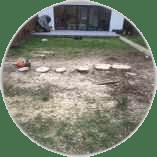 stump-removal-in-teddington